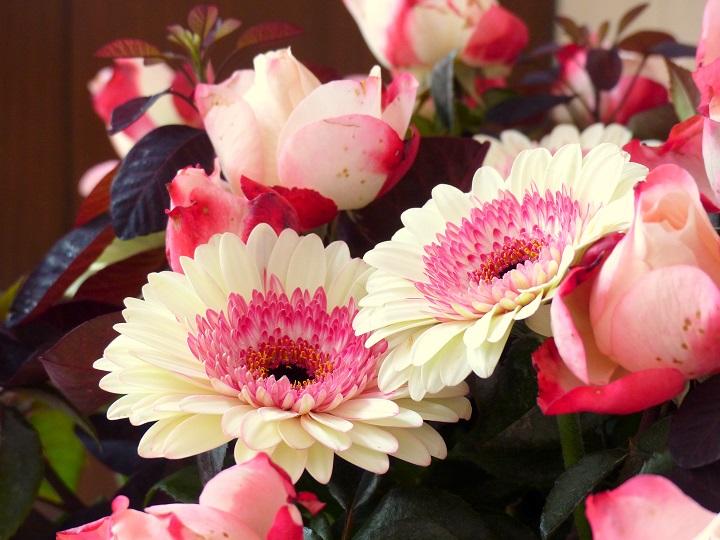 roze witte gerbera's zondag