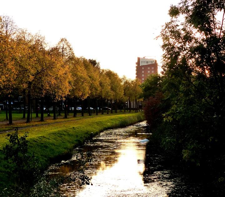autumn photo's
