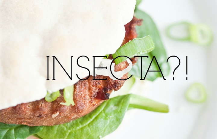 Insecta burger