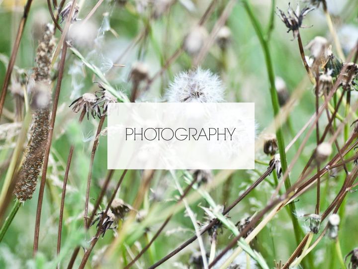 PLANNEN PHOTOGRAPHY