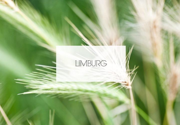 plannen limburg