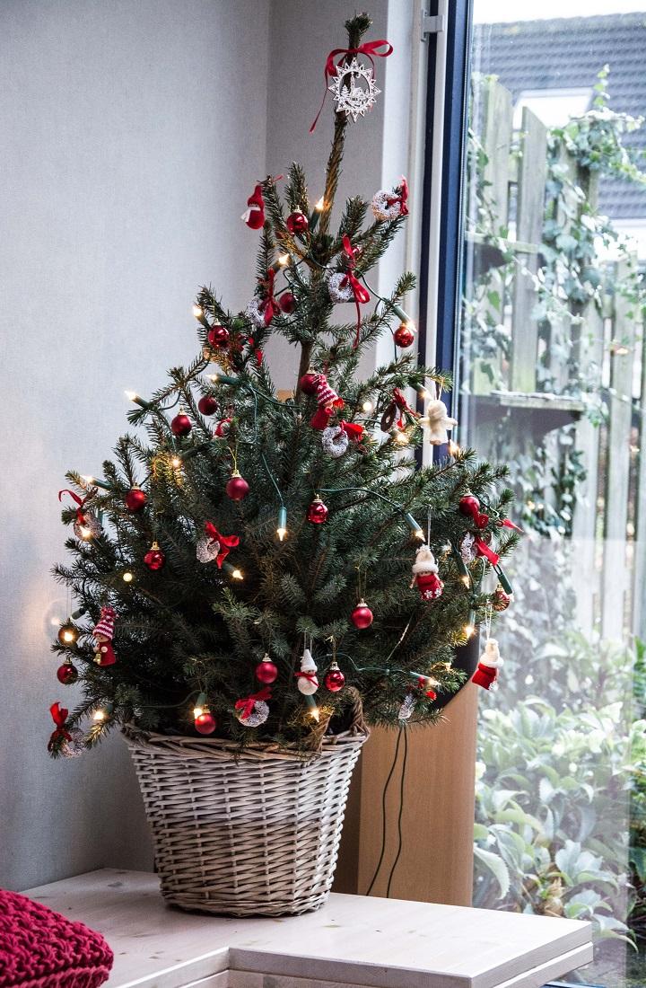 kerstboom lichtjes