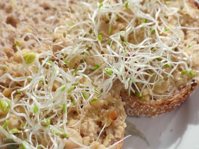 humus met kiemen