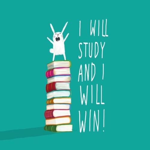 study motivation 2