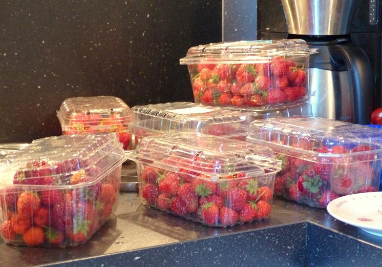 woensdag aardbeien moestuin