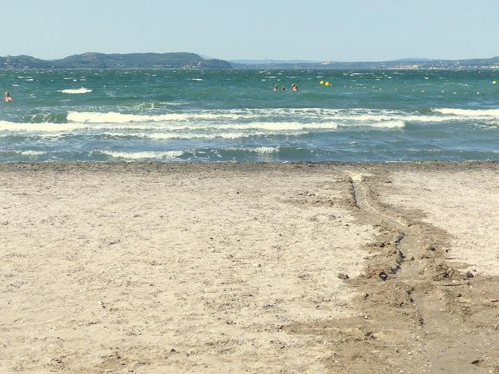 strand massane