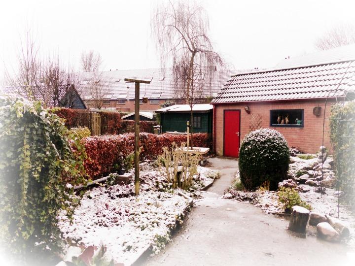 sneeuw tuin