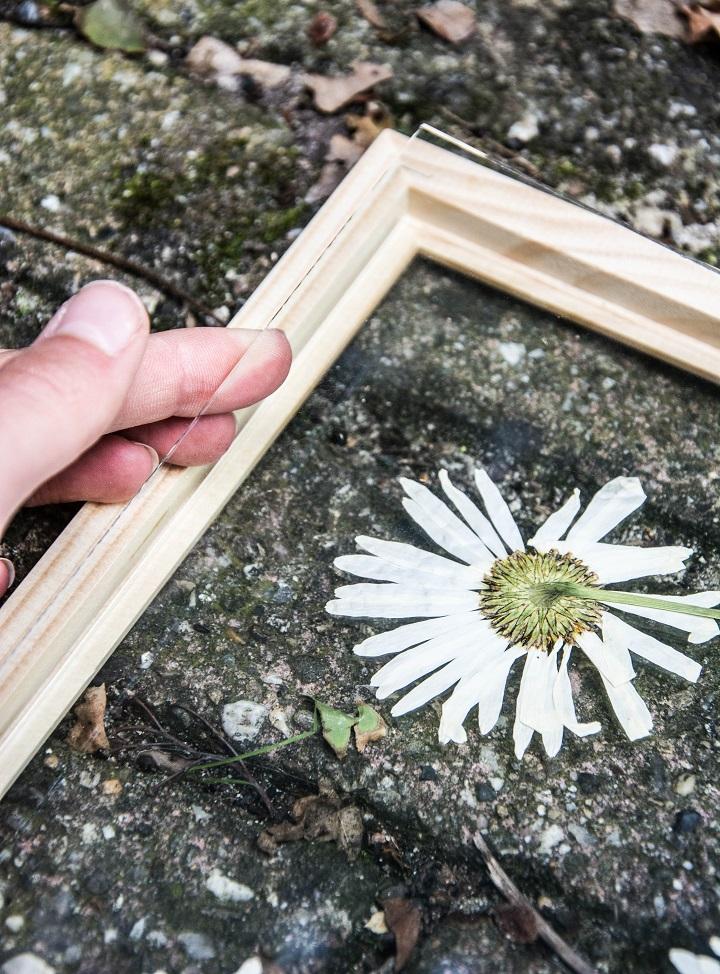 DIY gedroogde bloem