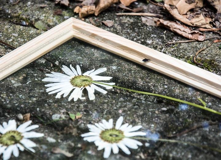 DIY gedroogde bloemen