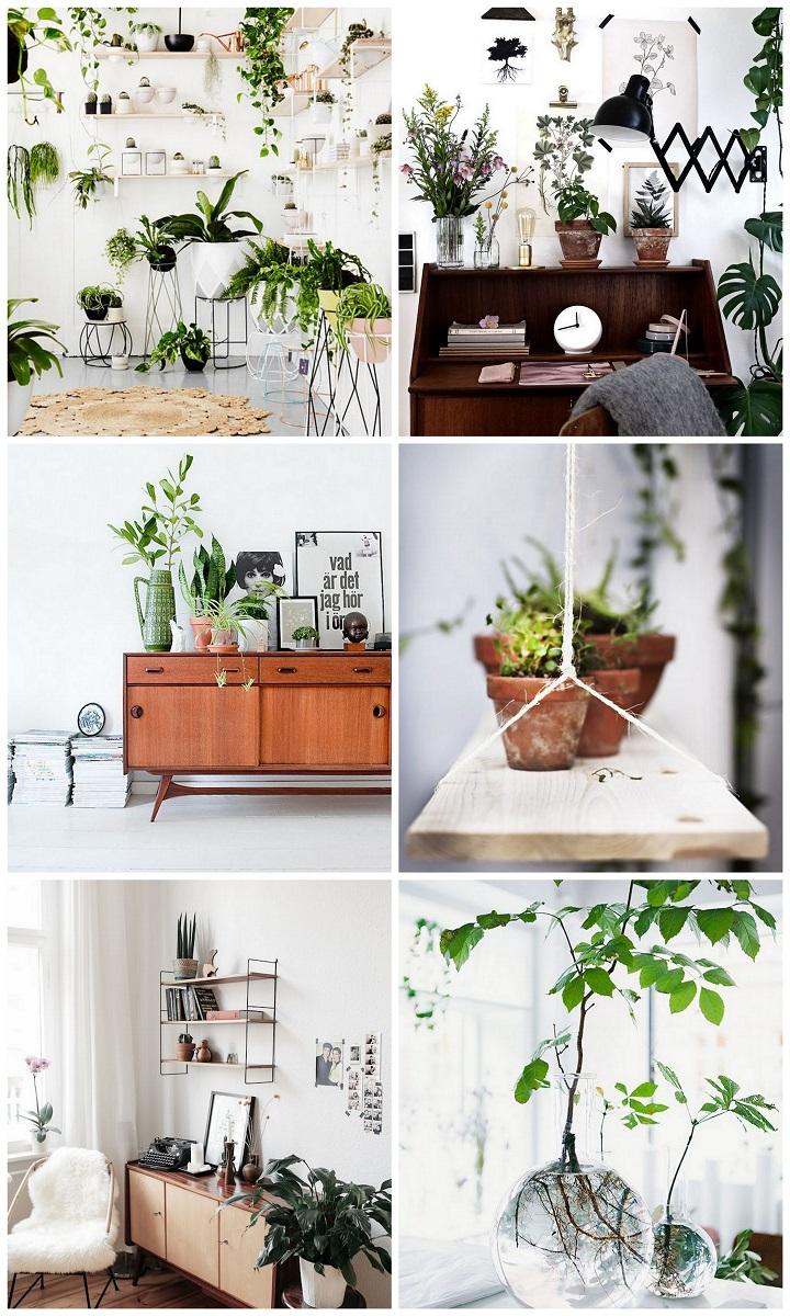 planten wit goed