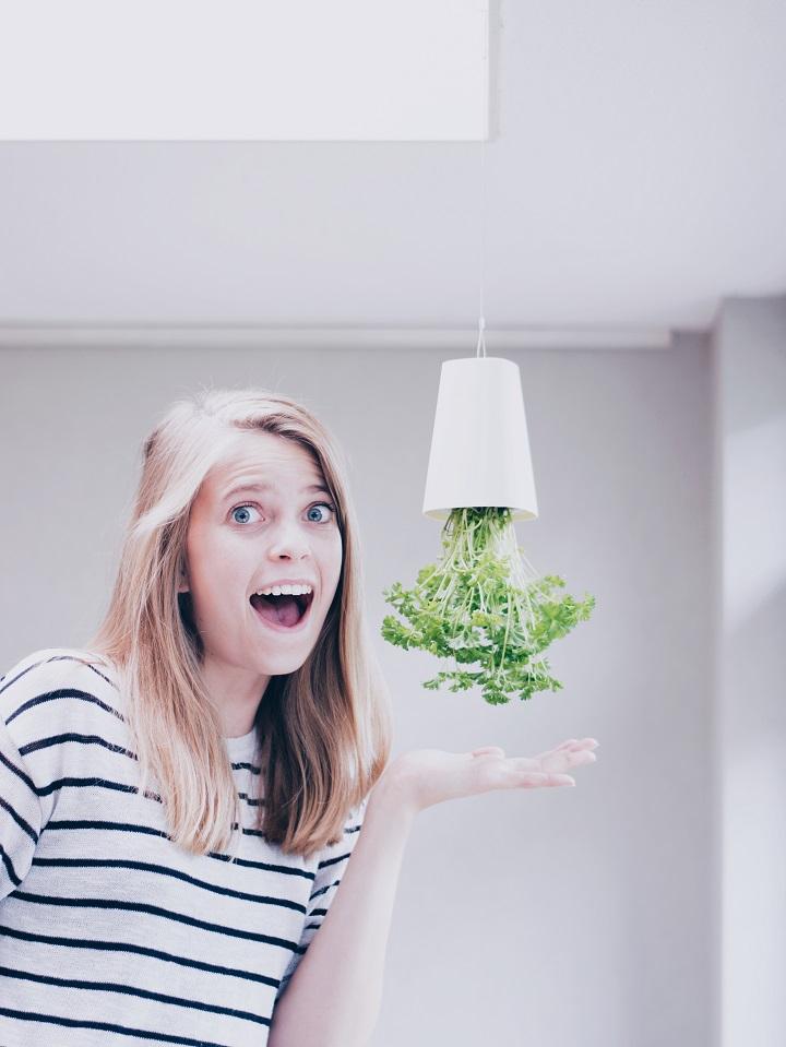 review-skyplanter